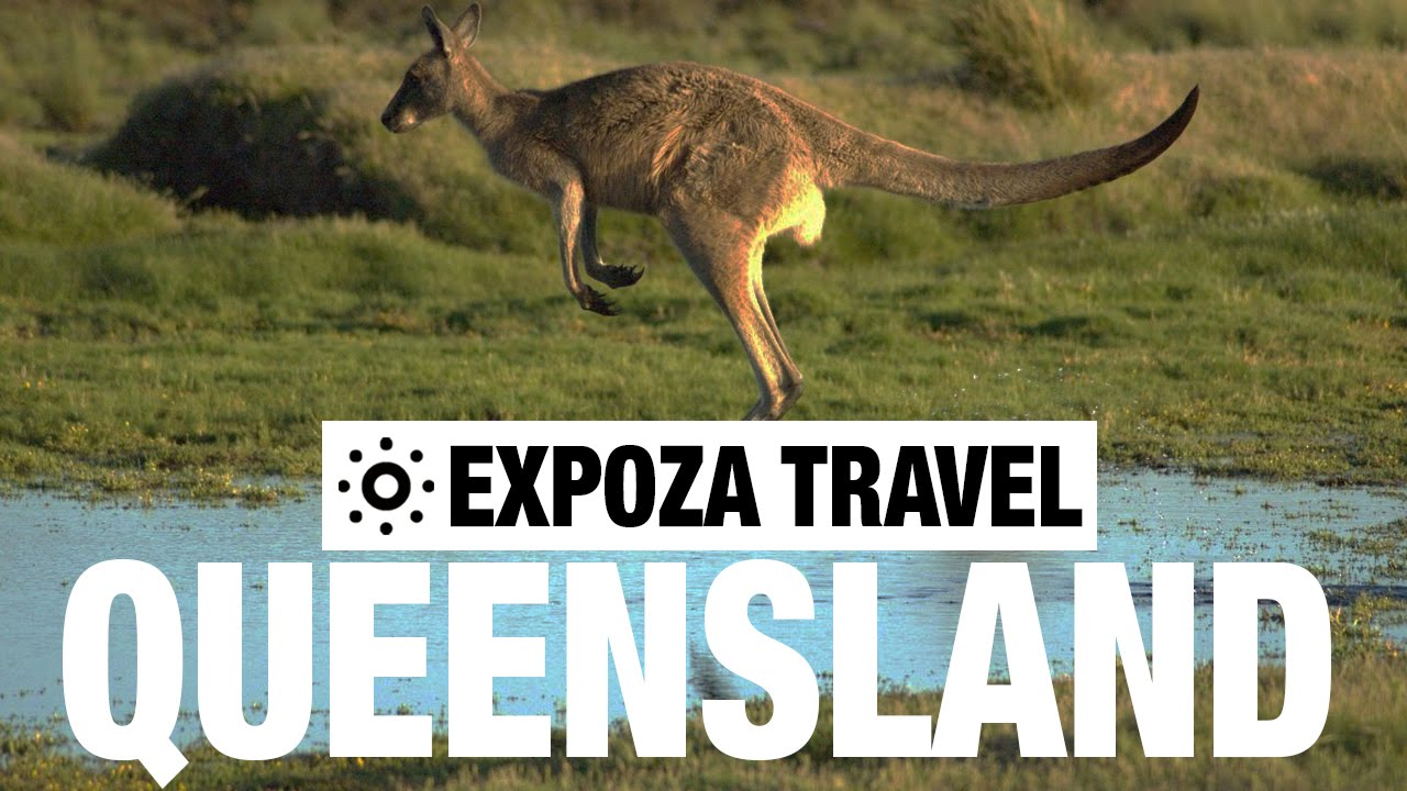 Read more about the article Queensland (Australia) Vacation Travel Wild Video Guide